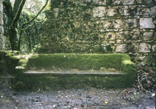 foto skøien grønn
